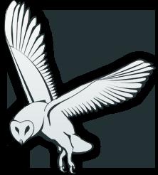 logo_kattuggla_KLAF
